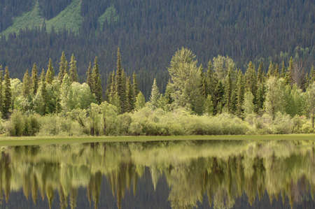 provincial: Reflection in Lake, Robson Provincial Park, Canada