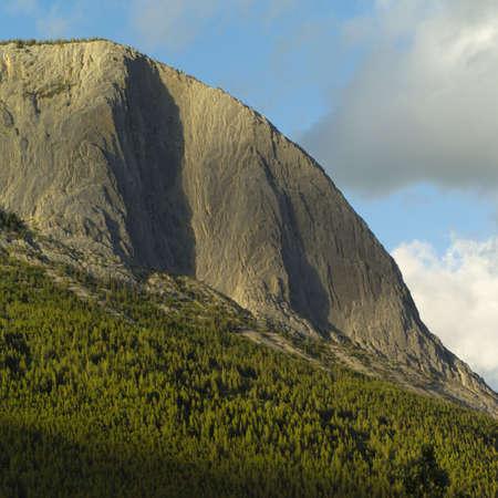 backwoods: Rocky Mountains, Jasper National Park, Canada