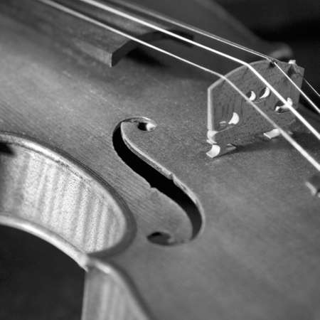 tuneful: Close up of Violin