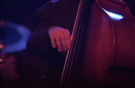 Double Bass being played by a musician Stock Photo - 227426