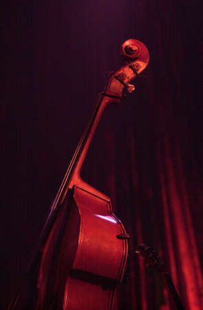 Double Bass Instrument Stock Photo - 227432