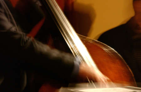 Double Bass being played by a musician Stock Photo - 227440