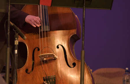 Double Bass being played by a musician Stock Photo - 227446