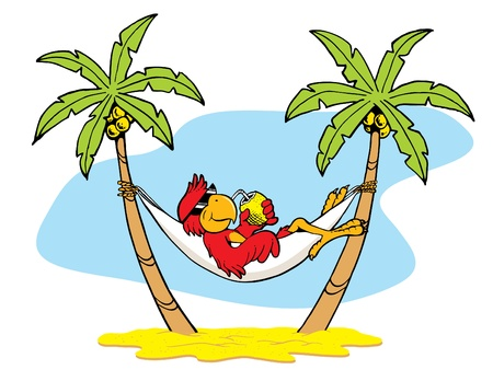 Caribbean sea: Hammock Parrot Illustration