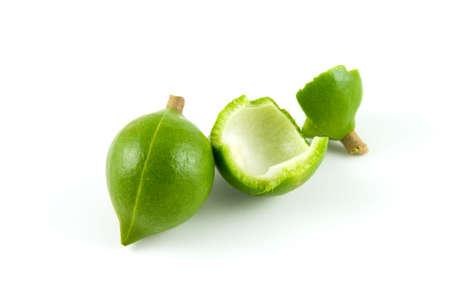 macadamia: Deux noix de macadamia m�r dans leurs bo�tiers fissur�s ouvrir une sur un fond blanc Banque d'images