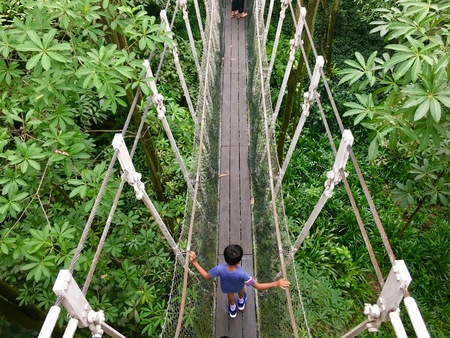 Asian child crossing a simple suspension rope bridge above tropical forest