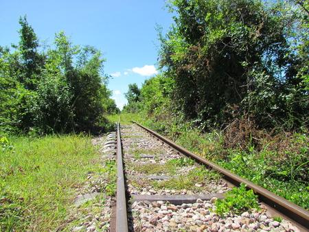 railtrack: Abandonned railroad covered with grass in cambodia