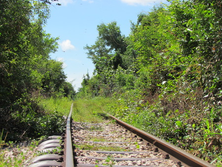 Abandonned railroad covered with grass in cambodia