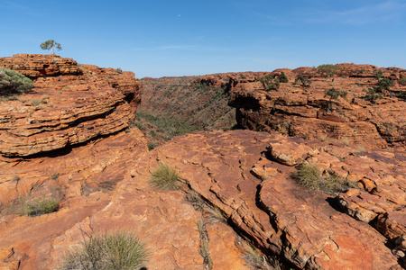 Kings canyon landscape with red sandstone domes during the Rim walk in NT outback Australia