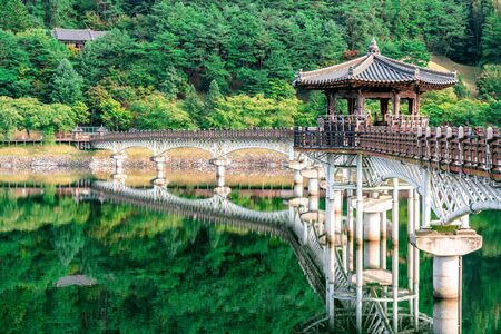 View of Weolyeonggyo bridge and pavilion with water reflection a wooden bridge spanning the Nakdong River in Andong South Korea
