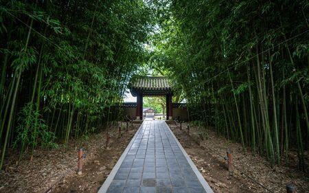 Bamboo grove alley and traditional gate at Gyeonggijeon Shrine in Jeonju South Korea