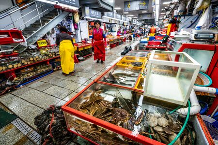 Busan Korea , 2 October 2019 : Jagalchi fish market alley view with alive crabs and fishes cases in Busan South Korea