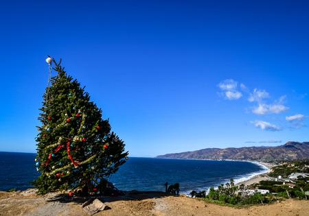 christmas tree on the beach Фото со стока