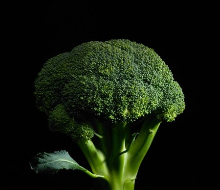 fresh vivid green broccoli on black background photo