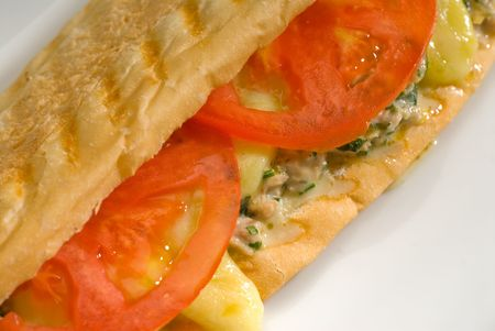 tuna tomato and cheese grilled panini sandwich close up on a plate photo