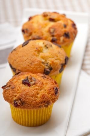fresh home made chocolate and raisins muffins Stock Photo - 17006787