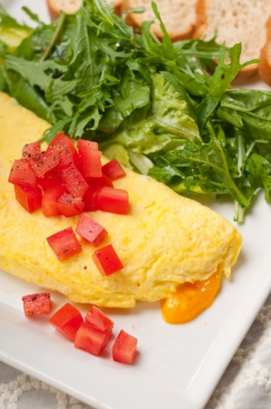 home made omelette with cheese tomato and rucola rocket salad arugola Stock Photo - 17006846