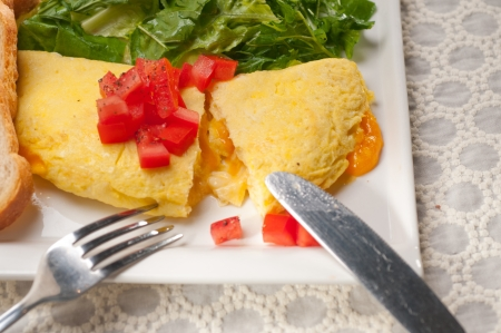 home made omelette with cheese tomato and rucola rocket salad arugola Stock Photo - 17006840