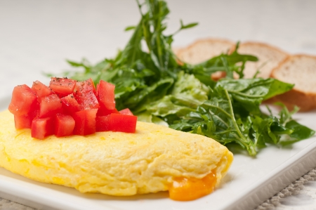 home made omelette with cheese tomato and rucola rocket salad arugola Stock Photo - 17050435