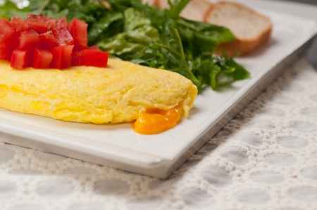 home made omelette with cheese tomato and rucola rocket salad arugola Stock Photo - 17050434