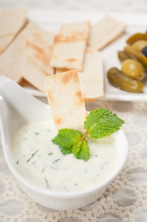 fresh Greek Tzatziki yogurt dip and pita bread and pickels Stock Photo - 17105554