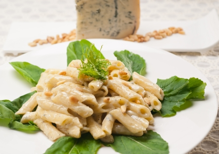 Italian traditional pasta penne gorgonzola and pine nuts Stock Photo - 17105559