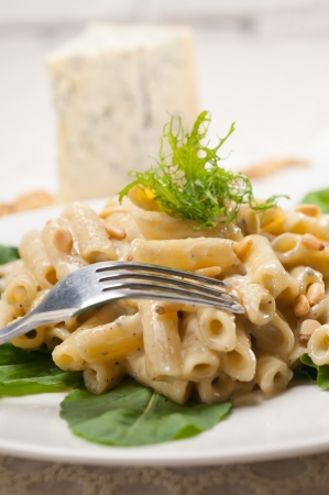 Italian traditional pasta penne gorgonzola and pine nuts Stock Photo - 17105570