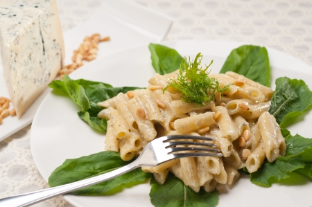 Italian traditional pasta penne gorgonzola and pine nuts Stock Photo - 17105560