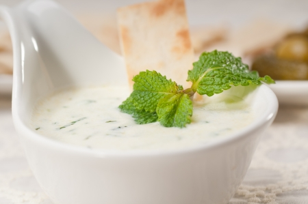 fresh Greek Tzatziki yogurt dip and pita bread and pickels Stock Photo - 17349873