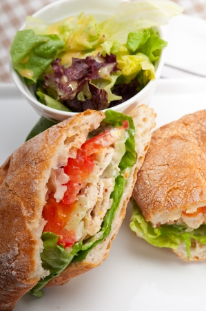 italian ciabatta panini sandwich with chicken and tomato Stock Photo - 17349862