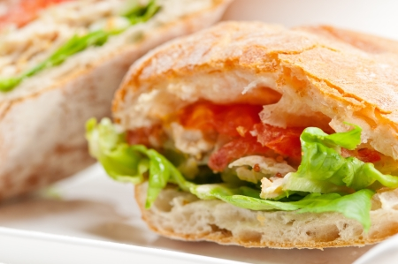italian ciabatta panini sandwich with chicken and tomato Stock Photo - 17349863