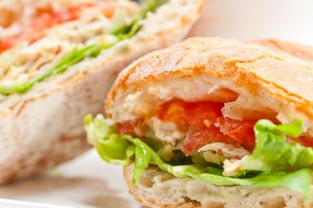 italian ciabatta panini sandwich with chicken and tomato Stock Photo - 17846670