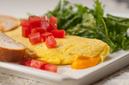 home made omelette with cheese tomato and rucola rocket salad arugola Stock Photo - 17846723