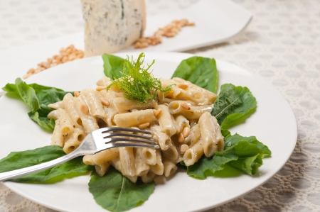 Gorgonzola italiano de pasta penne tradicional y pi�ones photo
