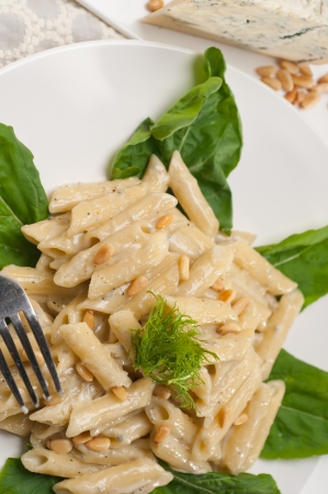 Italian traditional pasta penne gorgonzola and pine nuts Stock Photo - 17846739