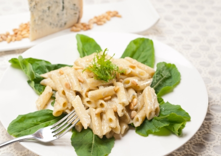 Italian traditional pasta penne gorgonzola and pine nuts Stock Photo - 17846731
