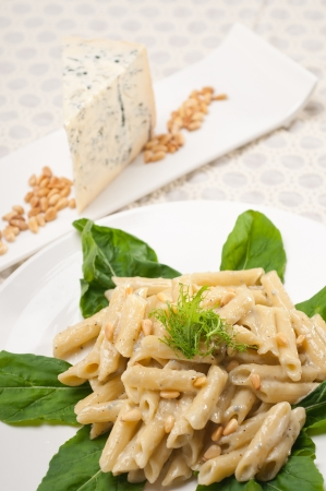 Italian traditional pasta penne gorgonzola and pine nuts Stock Photo - 17846733