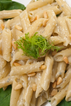 Italian traditional pasta penne gorgonzola and pine nuts Stock Photo - 17846741