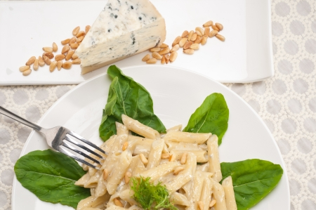 Italian traditional pasta penne gorgonzola and pine nuts photo