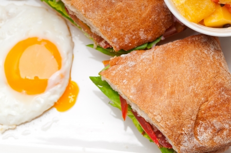fresh ciabatta panini sandwich with eggs tomato lettuce Stock Photo - 18399617