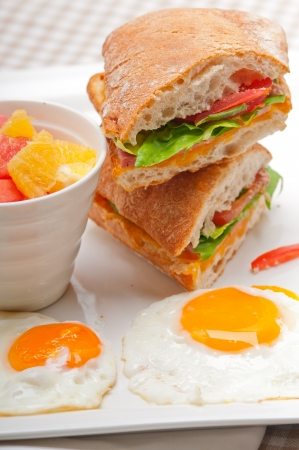 fresh ciabatta panini sandwich with eggs tomato lettuce Stock Photo - 18399608
