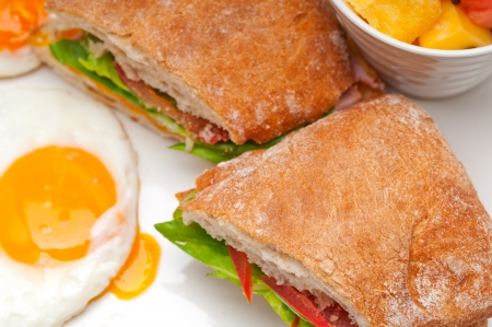 fresh ciabatta panini sandwich with eggs tomato lettuce Stock Photo - 18511617