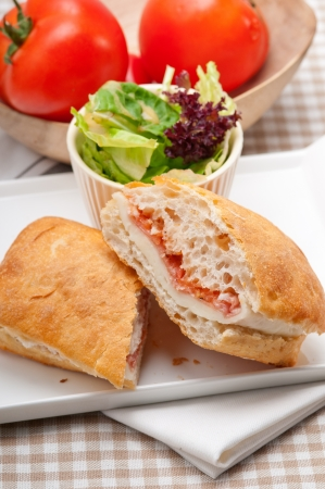 Italian ciabatta panini sandwich with parma ham and tomato Stock Photo - 18511609