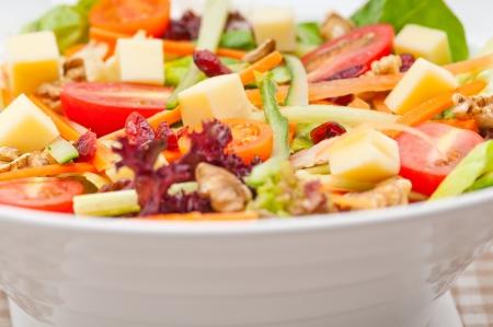 Fresh mixed colorful healthy salad closeup vegetarian food Stock Photo - 18511632