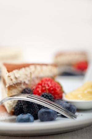 classic Italian tiramisu dessert with berries and custartd pastry cream on side Stock Photo - 19128487