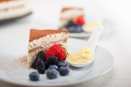 classic Italian tiramisu dessert with berries and custartd pastry cream on side  Stock Photo - 19128486