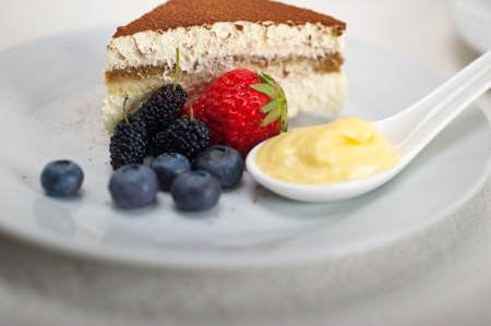 classic Italian tiramisu dessert with berries and custartd pastry cream on side  Stock Photo - 19128491