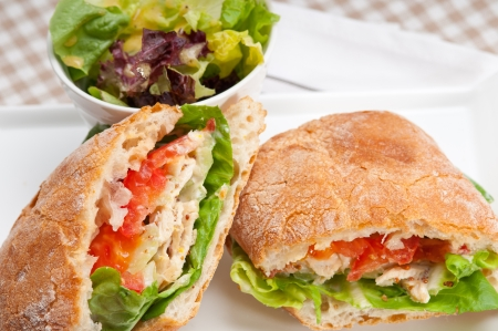 italian ciabatta panini sandwich with chicken and tomato Stock Photo - 19277513