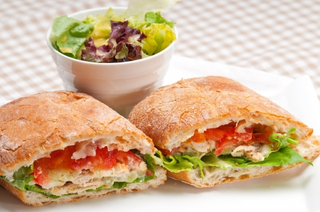 italian ciabatta panini sandwich with chicken and tomato Stock Photo - 19413081