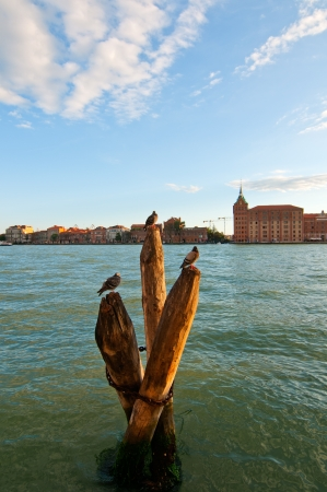 Venice Italy lagune view with bricole timber planted to sign the way of the canal photo